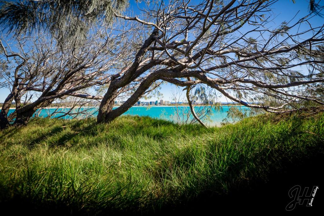 Pincushion Island